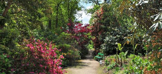 Parc botanique de cornouaille - Jardin botanique de cornouaille ...
